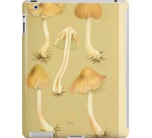 Illustrations of British Fungi by Mordecai Cubitt Cook 1891 V3 0549 AGARICUS  INOCYBE  HIULCUS iPad Case/Skin