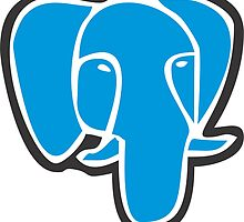 PostgreSQL by manriquesoto