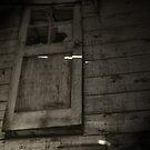 The Door is Ajar by Stephen  Van Tuyl