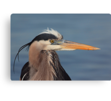 Is this my good side ? Canvas Print