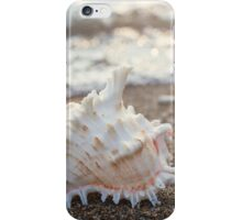 Seashell Photography, Fine Art Photography, Ocean, Beach, Conch, Macro, Coastal Wall Decor, iPhone Case/Skin