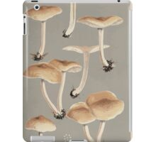 Illustrations of British Fungi by Mordecai Cubitt Cook 1891 V2 0181 AGARICUS  COLLYBIA  XYLOPHILUS iPad Case/Skin