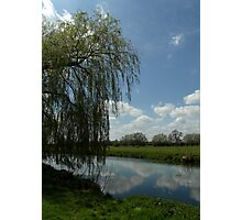 Weeping Willow Over the River Photographic Print