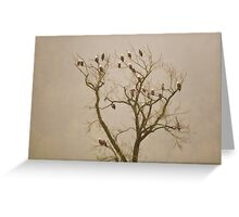 Eagles in the Mist Greeting Card