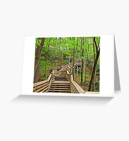 Going Down? Greeting Card