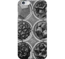 Platonic Solids iPhone Case/Skin
