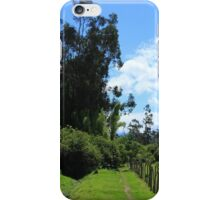 Walking Path Through a Forest iPhone Case/Skin