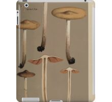 Illustrations of British Fungi by Mordecai Cubitt Cook 1891 V8 0307 AGRICUS  NAUCORIA  HAMADRYAS iPad Case/Skin
