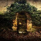*the secret garden* by funkymarmalade