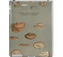 Illustrations of British Fungi by Mordecai Cubitt Cook 1891 V2 0581 AGARICUS  PLEUROTUS  ALGIDUS iPad Case/Skin