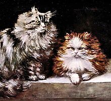 Persian Cats, Silver Tabby and Orange and White by goldenmenagerie