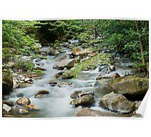 River in Ricon de la Vieja Poster