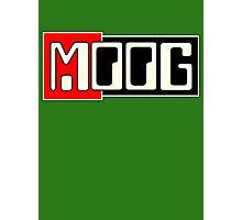 Vintage Moog  Synth Photographic Print