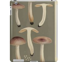 Illustrations of British Fungi by Mordecai Cubitt Cook 1891 V7 0519 RUSSULA  FRAGILES  PUELLARIS iPad Case/Skin