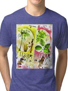 St Lucia Tri-blend T-Shirt