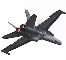 F/A-18 by Leigh Nelson