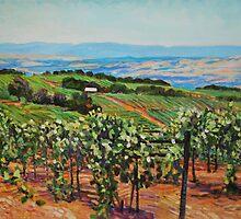 Vineyard by HDPotwin