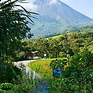 Pathway to Arenal Volcano by Tracy Riddell