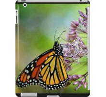 Monarch iPad Case/Skin