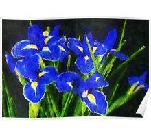 Irisis Poster