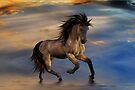 Cosmic .. Wild Stallion by LoneAngel