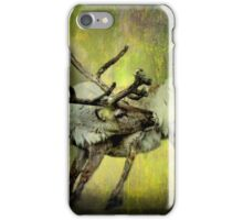 Caribou and the Northern Lights iPhone Case/Skin