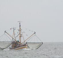 Shrimp boat by Stefanie Köppler