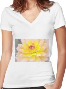 Sugar Candy Women's Fitted V-Neck T-Shirt