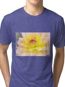 Sugar Candy Tri-blend T-Shirt