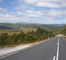 """Peak hour - Road to Cradle Mountain Tasmania"" by Bruce Perry"