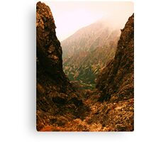 I'm really out there but I like the view Canvas Print