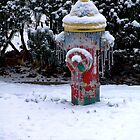Winter hydrant by AlcornImages