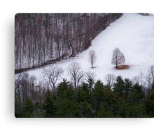 Winter in the Catskills Canvas Print