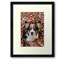 The Great Leaf-Tunnel Escape Framed Print
