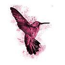 Pink Hummingbird by SMalik