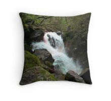 Moss Covered Rocks Throw Pillow