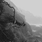 Oregon waters... by Allan  Erickson