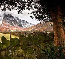Wasdale head by Shaun Whiteman