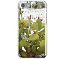 Snow Berries iPhone Case/Skin