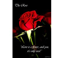 The Rose Card Photographic Print