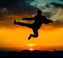 Sunset Ninja by Shane Rounce