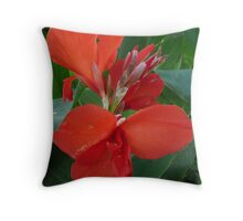 Red Canna Lily. Throw Pillow