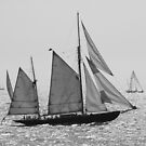 Sailing 1404a by Lena Weiss