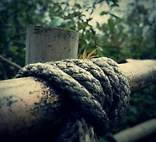 Bamboo & Knotted Rope by LozMac