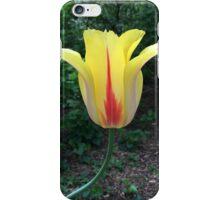 Yellow iPhone Case/Skin