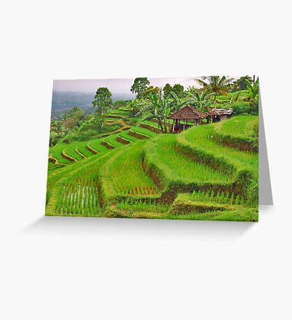 Green rice terraces Greeting Card