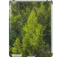 Trees and a container iPad Case/Skin