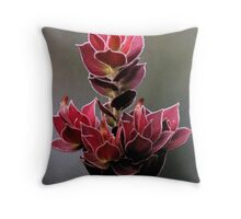 Fitzgerald River National Park - Royal hakea Throw Pillow