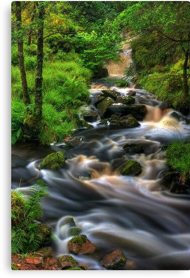 Highland Burn in spate, Summer. Scotland. by photosecosse /barbara jones