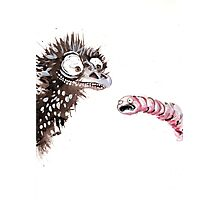 Emu and worm2 Photographic Print